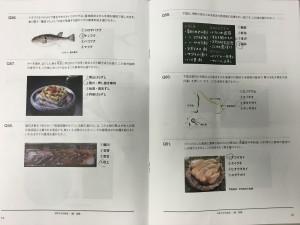 IMG_7062[1]